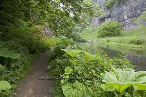 Photograph from  Chee Dale in Derbyshire