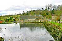 Tissington village pond